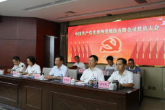 bob手机版官网港股份有限公司党员大会胜利闭幕